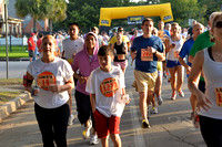 6183 - Houston  Heights 5k Fun Run