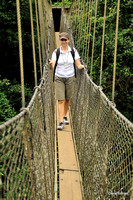 West Africa Canopy Trail