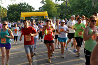 6186 - Houston  Heights 5k Fun Run